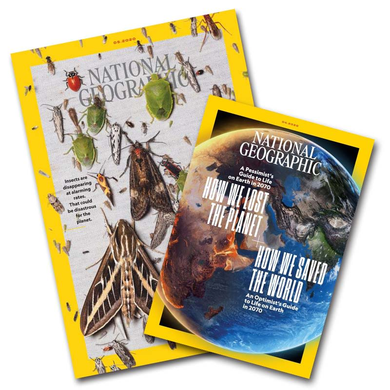 【7週年慶】國家地理雜誌 中文版24期 +送6期 +「國家地理 樹蛙T恤」兩件2